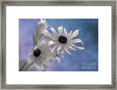 Attachement - S09at01 Framed Print by Variance Collections