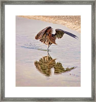 Attack Dance Framed Print