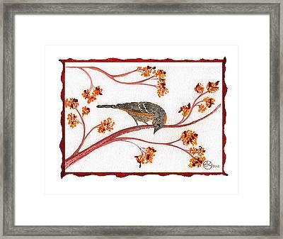 Audubon Warbler Framed Print by Alexandra  Sanders