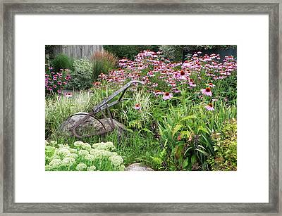 Aunt Christy's Garden Framed Print by Jennifer Compton