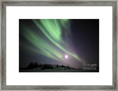 Aurora Borealis, Yellowknife, Northwest Framed Print by Jiri Hermann