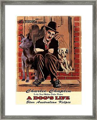 Australian Kelpie - A Dogs Life Movie Poster Framed Print