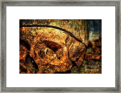 Autopsy Framed Print by Heather Applegate