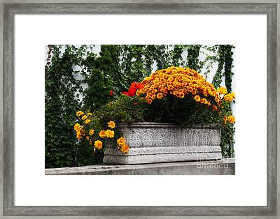 Autum Flowers With Red Accents And Ivy Framed Print