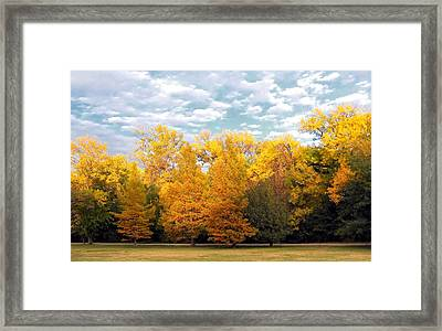 Autum In Texas Framed Print