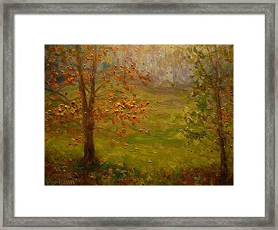 Autumn 2011 Dunedin Nz. Framed Print by Terry Perham
