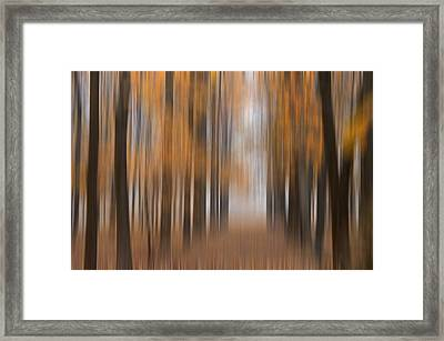 Autumn Abstract Framed Print