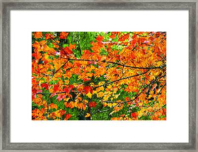 Autumn Abstract Painterly Framed Print by Andee Design