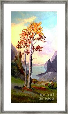 Autumn Aglow Framed Print