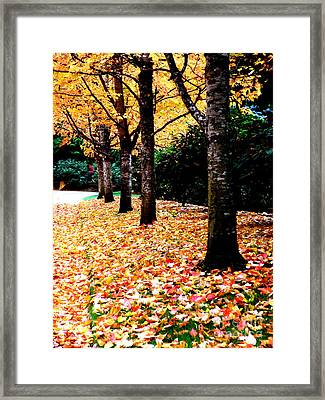 Autumn Alley  5 Framed Print