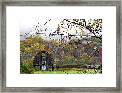 Autumn Along Tioga Road Framed Print by Thomas R Fletcher