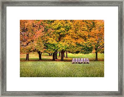 Autumn And A Bench Framed Print