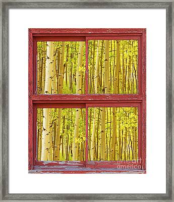 Autumn Aspen Trees Red Rustic Picture Window Frame Photos Fine A Framed Print by James BO  Insogna