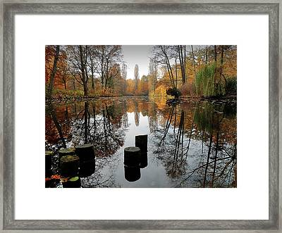 Autumn At Lake Framed Print
