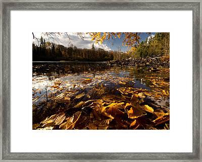 Autumn At Ragged Falls Framed Print