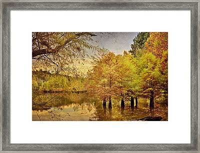Autumn At The Creek Framed Print by Cheryl Davis