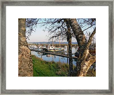 Autumn At The Harbor Framed Print by Pamela Patch