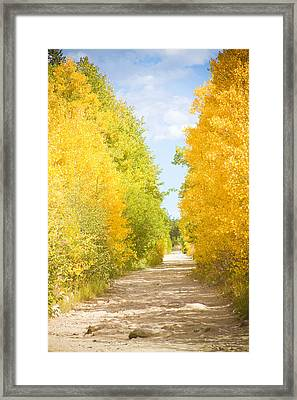 Autumn Back County Road Framed Print by James BO  Insogna