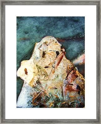 Autumn Becomes Winter Framed Print by Todd Sherlock