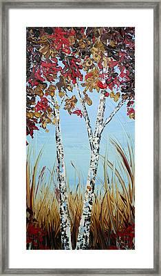 Autumn Birch Framed Print by Christine Krainock