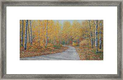 Autumn Birches Framed Print by Jake Vandenbrink