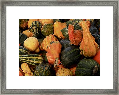 Framed Print featuring the photograph Autumn Bounty by Patrice Zinck