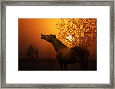 Autumn Breeze Framed Print by Joachim G Pinkawa