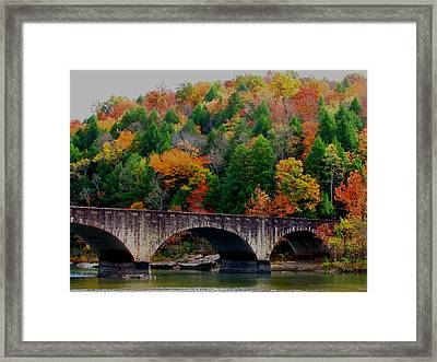 Autumn Bridge 2 Framed Print