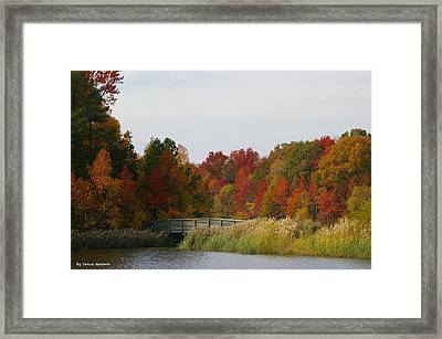 Framed Print featuring the photograph Autumn Bridge by Tannis  Baldwin