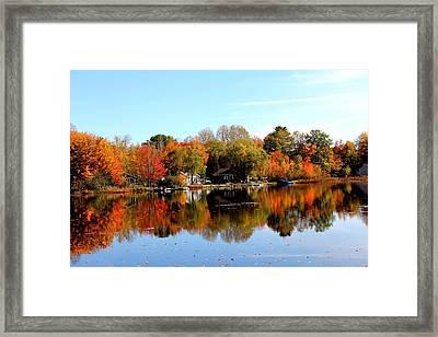 Autumn Bronze Framed Print