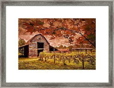 Autumn Cabernet Framed Print