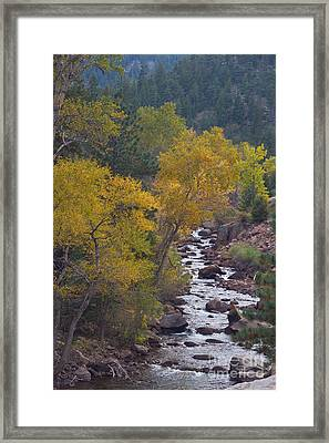 Autumn Canyon Colorado Scenic View Framed Print