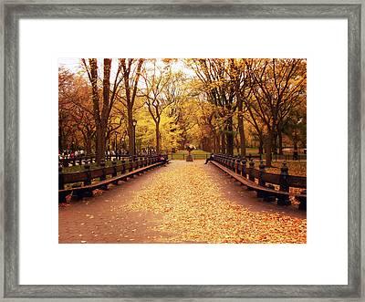 Autumn - Central Park - New York City Framed Print by Vivienne Gucwa