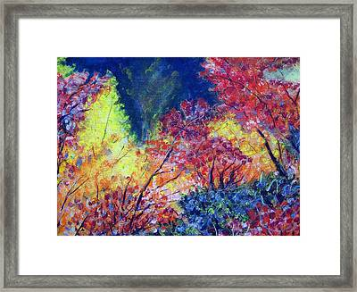 Autumn Color Framed Print by Jon Shepodd