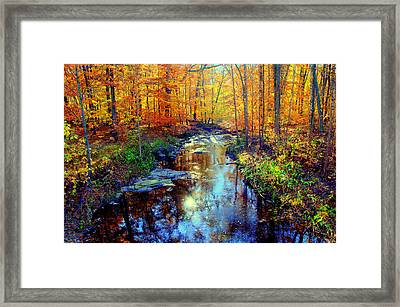 Autumn Colors 10 Framed Print by Aron Chervin