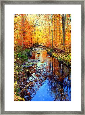 Autumn Colors 11 Framed Print by Aron Chervin