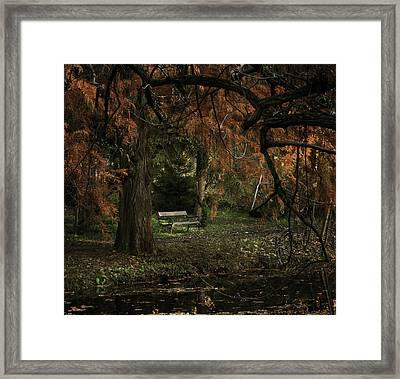 Autumn Colors Framed Print by Akos Kozari
