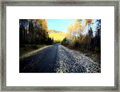 Autumn Colors Along Northern British Columbia Road Framed Print