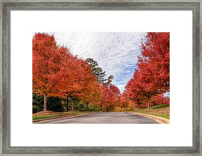 Framed Print featuring the photograph Autumn Colors by Anna Rumiantseva