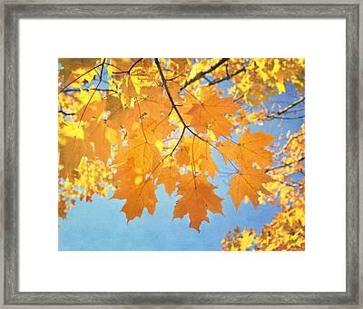 Autumn Colors Framed Print by Kim Hojnacki