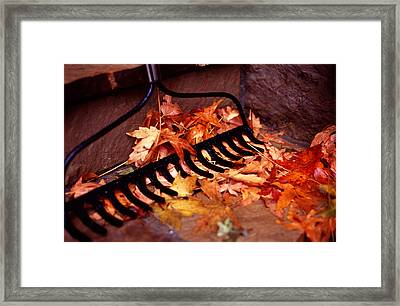 Autumn Colors Framed Print by Luis Esteves