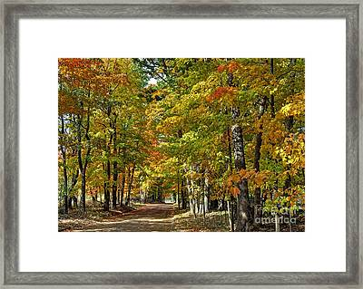 Autumn Colors Framed Print by Rodney Campbell