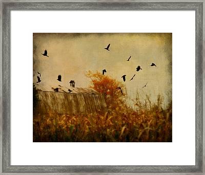 Autumn Cornfield Framed Print