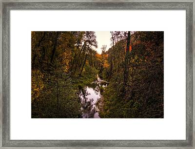 Autumn Creek  Framed Print