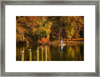 Autumn Day Framed Print by Boyd Alexander