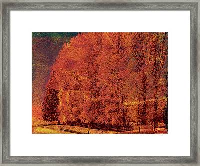 Autumn Days Framed Print by Linde Townsend