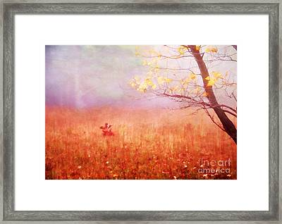 Autumn Dreams Framed Print by Darren Fisher