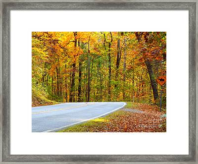Framed Print featuring the photograph Autumn Drive by Lydia Holly