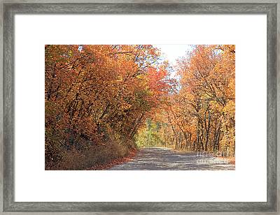 Autumn Escape  Framed Print