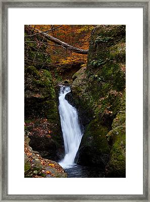 Autumn Falls Framed Print by Karol Livote
